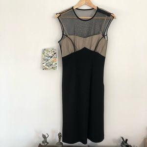 DVF Seductive Sheer Net Bustier Dress